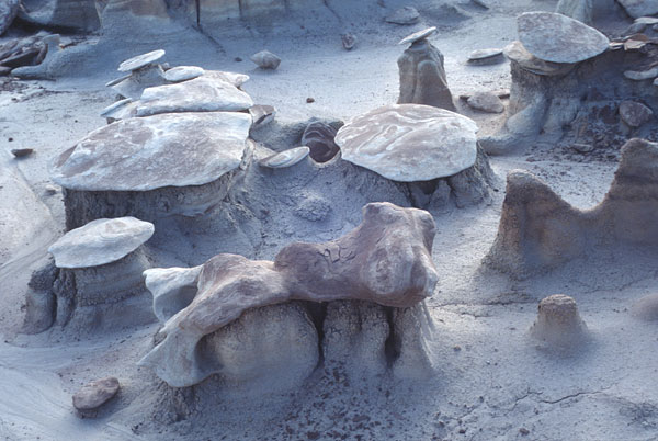 unusual formations in the Bisti